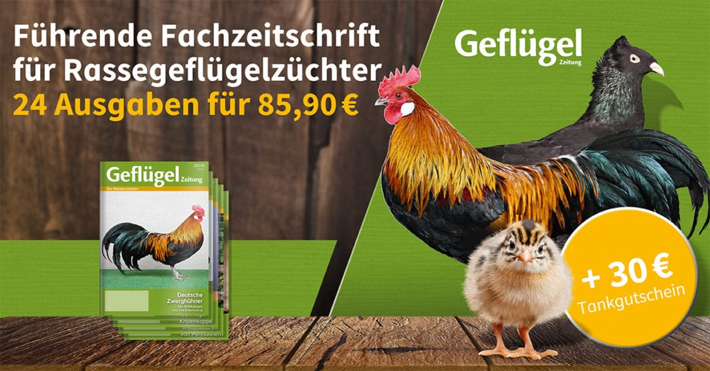 Banner Gefluegelzeitung Abo